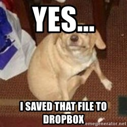 Oh You Dog - Yes... I saved that file to Dropbox