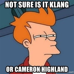 Not sure if troll - Not sure is it klang  Or Cameron HIghland
