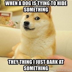 so doge - when a dog is tying to hide something they thing i just bark at something