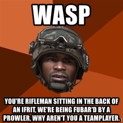 Sgt. Foley - WASP You're Rifleman sitting in the back of an IFRIT, we're being FUBAR'd by a prowler, why aren't you a teamplayer.