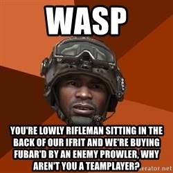 Sgt. Foley - Wasp You're lowly Rifleman sitting in the back of our IFRIT and we're buying FUBAR'D by an enemy prowler, why aren't you a teamplayer?