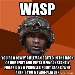 Sgt. Foley - Wasp You're a lowly Rifleman seated in the back of our IFRIT and we're being instantly FUBAR'D by a Prowler point blank, why aren't you a team-player?