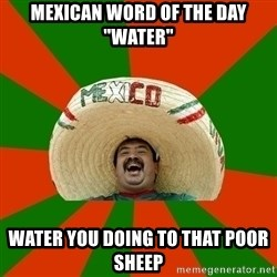 """Successful Mexican - Mexican word of the day """"water"""" Water you doing to that poor sheep"""