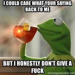 Kermit The Frog Drinking Tea - I could care what your saying back to me But I honestly don't give a fuck