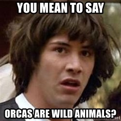 Conspiracy Keanu - You mean to say orcas are wild animals?