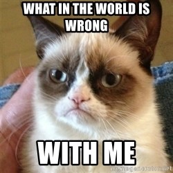 Grumpy Cat  - What in the world is wrong  With me