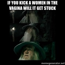 Confused Gandalf - If you kick a women in the vagina will it get stuck