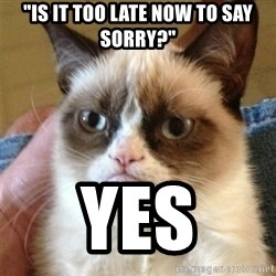 """Grumpy Cat  - """"Is it too late now to say sorry?"""" yes"""
