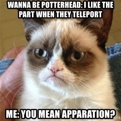 Grumpy Cat  - Wanna be potterhead: I like the part when they teleport  Me: you mean apparation?