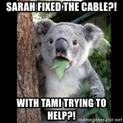 Koala can't believe it - Sarah fixed the cable?! With Tami trying to help?!