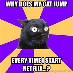 Anxiety Cat - Why does my cat jump  every time I start Netflix...?