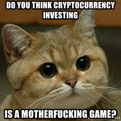 Do you think this is a motherfucking game? - do you think cryptocurrency investing is a motherfucking game?