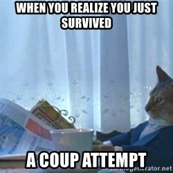 newspaper cat realization - when you realize you just survived a coup attempt