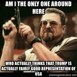 am i the only one around here - AM I THE ONLY ONE AROUND HERE Who actually thinks that Trump is actually fairly good representation of USA