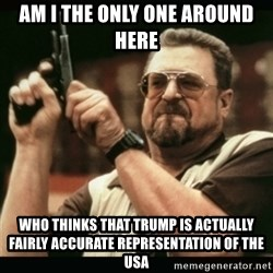 am i the only one around here - AM I THE ONLY ONE AROUND HERE WHO THINKS THAT TRUMP IS ACTUALLY FAIRLY ACCURATE REPRESENTATION OF THE USA