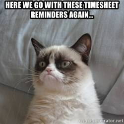 Grumpy cat good - Here we go with these timesheet reminders again...