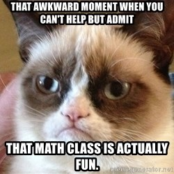 Angry Cat Meme - That awkward moment when you can't help but admit that math class is actually fun.