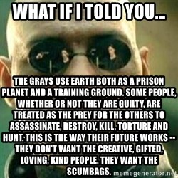 What If I Told You - What if I told you... The Grays use Earth both as a prison planet and a training ground. Some people, whether or not they are guilty, are treated as the prey for the others to assassinate, destroy, kill, torture and hunt. This is the way their future works -- they don't want the creative, gifted, loving, kind people. They want the scumbags.