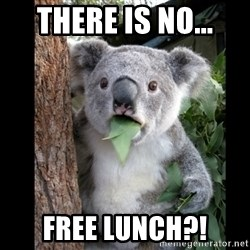 Koala can't believe it - There is no... free lunch?!