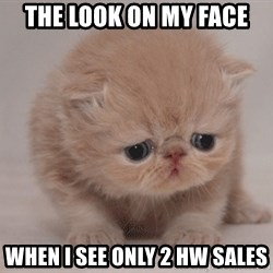 Super Sad Cat - the look on my face when i see only 2 HW sales