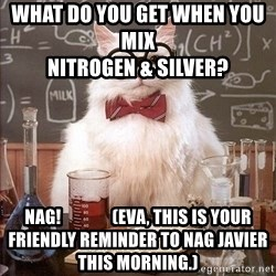 Chemistry Cat - What do you get when you mix                                                       Nitrogen & Silver? NAG!               (Eva, this is your friendly reminder to NAG Javier this morning.)