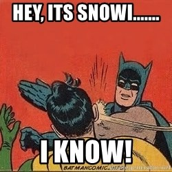 batman slap robin - Hey, its snowi....... I KNOW!