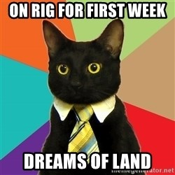 Business Cat - On rig for first week  Dreams of land
