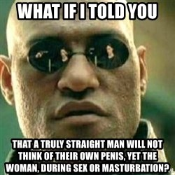 What If I Told You - what if I told you That a truly straight man will not think of their own penis, yet the woman, during sex or masturbation?