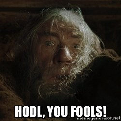 gandalf run you fools closeup - HODL, YOU FOOLS!