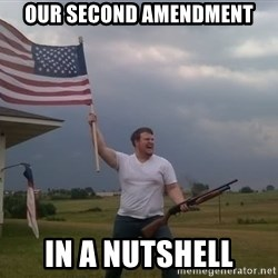 american flag shotgun guy - Our second amendment in a nutshell