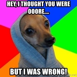 Good Guy Greg's dog - Hey, I thought you were ooore.... But I was wrong!