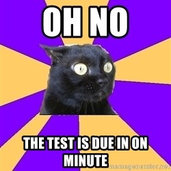Anxiety Cat - oh no  the test is due in on minute
