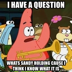 patrick star - i have a question  whats sandy holding cause i think i know what it is
