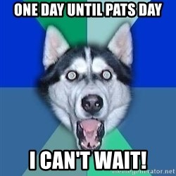 Spoiler Dog - one day until pats day i can't wait!