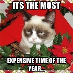 Grumpy Christmas Cat - its the most expensive time of the year...