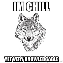 Sarcastic Wolf - Im chill  yet very knowledgable