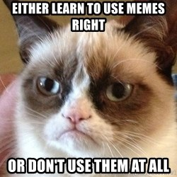 Angry Cat Meme - either learn to use memes right OR DON'T USE THEM AT ALL