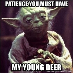 Advice Yoda - Patience you must have My young Deer