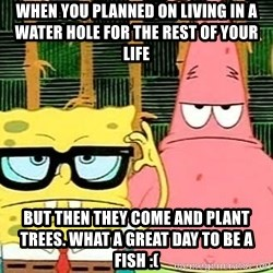 Serious Spongebob - when you planned on living in a water hole for the rest of your life but then they come and plant trees. what a great day to be a fish :(