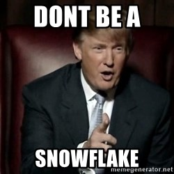 Donald Trump - DONT BE A  SNOWFLAKE