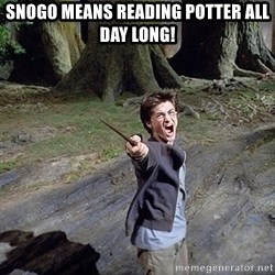Pissed off Harry - Snogo means reading potter all day long!