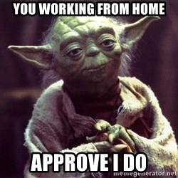Yoda - You working from home Approve I do