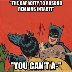 """batman slap robin - """"THE CAPACITY TO ABSORB REMAINS INTACT!"""" """"You can't a-"""""""