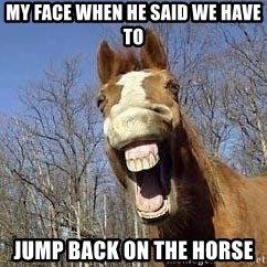 Horse - MY FACE WHEN HE SAID WE HAVE TO JUMP BACK ON THE HORSE