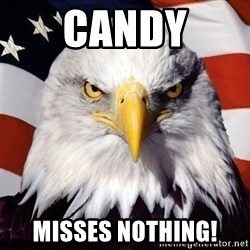 American Pride Eagle - Candy MIsses Nothing!