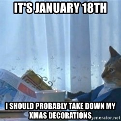 Sophisticated Cat - It's January 18th I should probably take down my Xmas decorations
