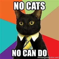 Business Cat - No CATS no can do