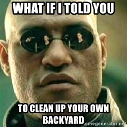 What If I Told You - What if I told you To clean up your own backyard