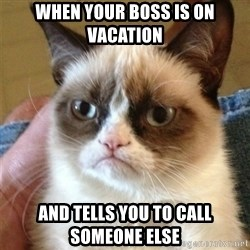 Grumpy Cat  - when your boss is on vacation and tells you to call someone else