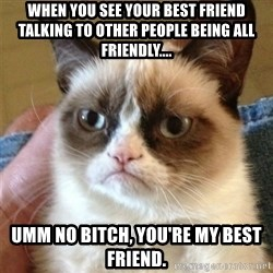 Grumpy Cat  - When you see your Best friend talking to other people being all friendly.... Umm No bitch, you're my best friend.